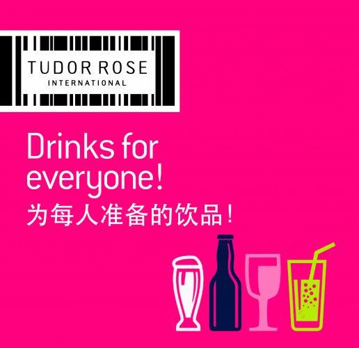 chinese exhibition graphics tudor rose international